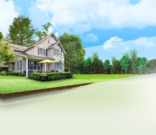 Real Estate Marketing Strategy Financial Year 2019 -2020